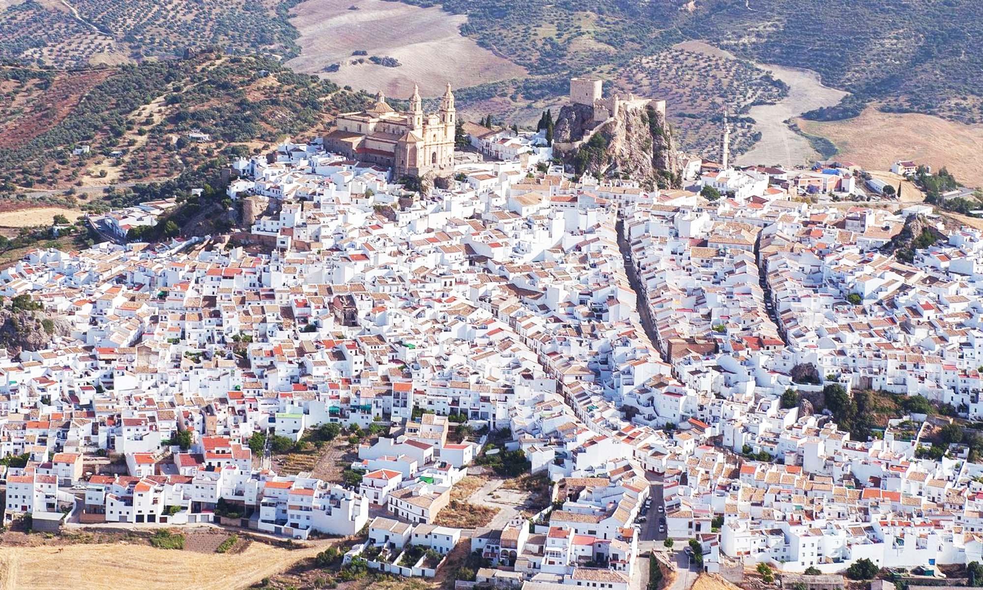 Aceites  de Oliva Virgen Extra y Ecologicos de la Sierra de Cadiz